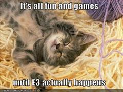 e3cat.jpg